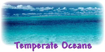 Temperate Oceans