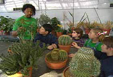 Roderick and Friends with Cacti in Greenhouse